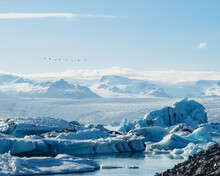 A Glacier With Icebergs And Mountain Landscape With Birds Flying.