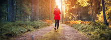 Young Woman Walking In The Autumnal Forest In Sunrise.