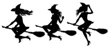 Tree Silhouettes Of Young Beautiful Sexy Witch Flying On A Broomstick. Pretty Woman With Fluttering Hair Wearing Witches Hat Sitting On A Besom. Vector Illustration For Halloween Design.