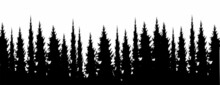 Forest Silhouette, Pine Tree Silhouette Vector Collection