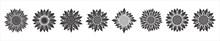 Sunflower Blossom Vector Illustration Set. Sunflower, Aster, Marigold Flower Illustration Design Set. Black Color