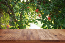 Vintage Wooden Board Table In Front Of Pomegranate Tree Landscape. Product Display Presentation
