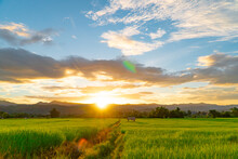 Green Rice Fields During Sunset With Clouds Sky And Flare Light At Mae Hong Son Province Thailand.