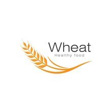 Wheat Illustration Design