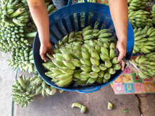 The Green Banana In The Blue Basket Was Laying On The Weighing Scale. Plenty Of Bananas In The Market Selling Fresh Fruit That Banana Farmers In Thailand Sell.