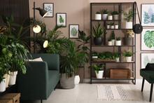 Stylish Living Room Interior With Many Beautiful Houseplants