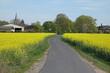 canvas print picture - Weg bei Babenhausen-Langstadt