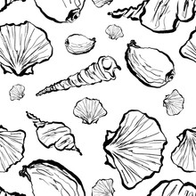Seamless Pattern Of Seashells, One Line Drawing, Isolated Sketch Of Sea Shell, Drawing On White Background