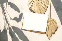 Dry Palm Leaves And Blank Greeting Card Mock Up Scene On A Cement Background And Contrasting Shadows. Flat Lay, Top View. Empty Space. Modern Still Life