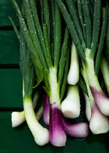 Spring Onions At The Market