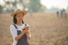 Farmer Working On Field Using Tablet In Modern Agriculture. A Woman Farmer Examines The Farm And Sends Data To The Cloud From The Tablet. Smart Farming And Digital Agriculture.