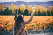 Positive Woman In Stylish Hat And Coat With Glass Of Wine Raises Hands Looking At Picturesque Large Vineyard Against Hills On Autumn Day Backside View
