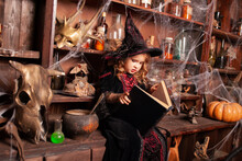 A Small Charming Witch Holds A Book In Her Hands Against The Background Of A Closet With Flasks, An Orange Pumpkin Stands On A Table With Space For Text