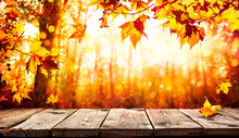 Autumn Table - Yellow Leaves And Forest Background