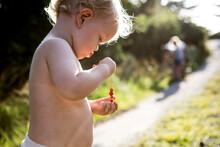 Toddler Holding Wild Strawberries