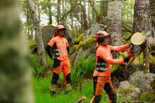 Female Lumberjacks Cutting Log In Forest