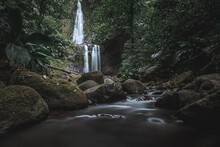Chute Moreau En Guadeloupe