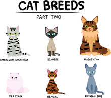 Set Of Cat Breeds Part Two
