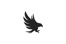 Unique Bird Logo Deisgn