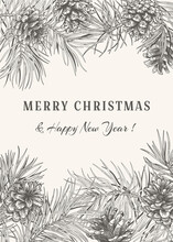 Christmas Botanical Card With Branches Pine, Cones. Black And White.