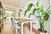 Light Dining Room With Wooden Floor