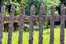 Very Old Wood Picket Fence, Mossy Old Wooden Fence In The Forest Park, Moss