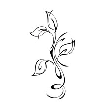 Ornament 1947. Stylized Twig With Leaves And Curls In Black Lines On A White Background