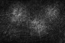 Dark Vector Background With Spider Web.