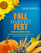 Harvest Festival Poster Design. Invitation For Crop Fest With Sunflower And Fruits. Vector Illustration.