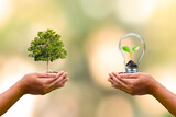 human hand planted trees and small trees growing in light bulbs on human hands to conserve earth day environmental conservation concept
