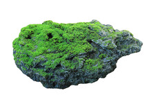 Rock Covered In Green Moss Isolated On White Background