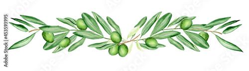 Fotografie, Obraz Green olive branches watercolor border