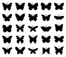 Vector Beautiful Butterfly Insect Icons Isolated On White Background. Silhouette Of Tropical Butterflies. Summer Nature Illustration