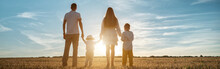 Panoramic View Of Family With Children Sons Stands Joining Hands At Sunset Backside View