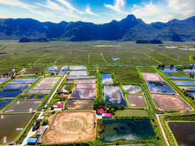 High Angle View Of Fish Farm And Salt Farm At Rural Area With Mountains Background. Agriculture Concept