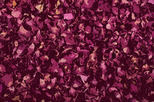 Beautiful Abstract Floral Background In The Form Of Application Of Dried Rose Petals. Design Elements For Packaging Herbal Tea From Hibiscus