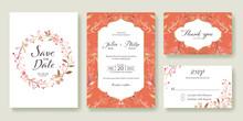 Wedding Invitation, Save The Date, Thank You, Rsvp Card Design Template. Vector. Summer Vintage  Pink Flower.