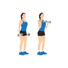 Woman Doing Dumbbell Bicep Hammer Curls. Flat Vector Illustration Isolated On Different Layer. Workout Character