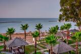 Fototapeta Bambus - Palm trees and sun loungers on the Mediterranean beach at sunrise, Turkey