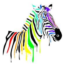 Splatter Paint Rainbow Zebra