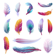 Colorful Bird Feather. Realistic Feathers, Isolated Boho Color Elements. Tribal Artistic Wings, Different Decorative Feathering Swanky Vector Clipart