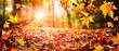 Leinwandbild Motiv Leaves Falling In Defocused Autumn Forest With Sunlight