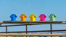 Colorful Wooden Bird Houses On A Fence Background And Copy Space. Vibrant Colors Handmade Bird Box Craft