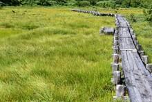 浄土平湿原・木道