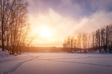 Sunset Or Sunrise On A Frozen Pond With Birches Along The Banks In Winter.