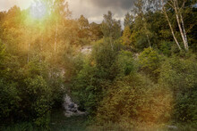 Scenic Sunset In The Woods With Sunbeams Shining Through The Lush Trees. Stone Hill Slope Sticks Out From Plants. Forest In The Countryside In Summer.