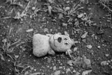 A Teddy Bear Abandoned On The Ground