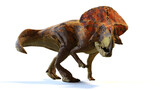 Protoceratops, dinosaur from the Late Cretaceous period, isolated with shadow on white background