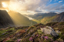 Breathtaking View Of Buttermere And Crummock Water In The English Lake District Taken On A Sunny Summer Evening. Dramatic Light Illuminating Mountain Range With Heather In Foreground.