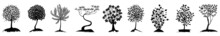 Tree Silhouette Vector. Isolated Forest Trees On White Background. Tree, Silhouette, Nature, Vector, Illustration, Black, Forest, Collection, Set, Design, Leaf, Pine, Background, Park, Outline.